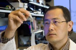 Nobel Laureate Shinya Yamanaka gives stem cell lecture at A*STAR